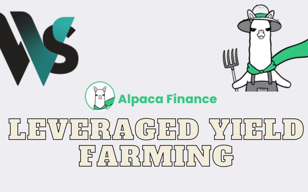 What is Alpaca Finance? How to leverage yield farm Wex/BNB on Alpaca 17M% ROI!
